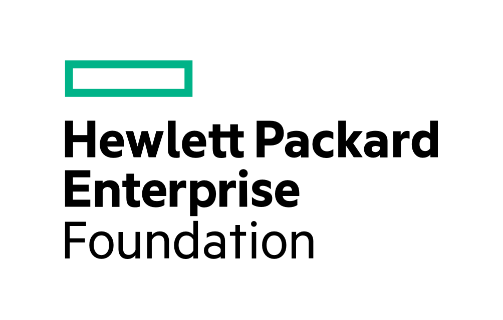 HEWLETT PACKARD ENTERPRISE FOUNDATION