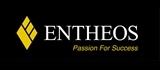 Entheos Consulting Pte Ltd